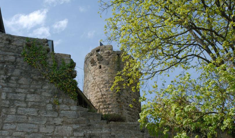 Die Burg Krautheim in Krautheim in Baden-Württemberg: man sieht den Bergfried und vorne altes Gemäuer. Rechts ist das hellgrüne Laub eines Bauems sichtbar.